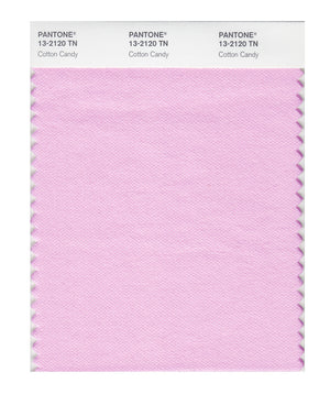 Pantone Nylon Brights Color Swatch 13-2120 TN Cotton Candy