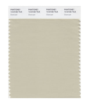 Pantone SMART Color Swatch 14-0105 TCX Overcast