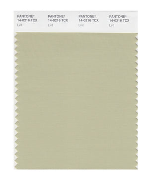 Pantone SMART Color Swatch 14-0216 TCX Lint