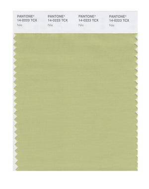 Pantone SMART Color Swatch 14-0223 TCX Nile
