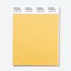 Pantone Polyester Swatch Card 14-0926 TSX Sunflower Seed