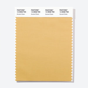 Pantone Polyester Swatch Card 14-0938 TSX Ancient Grain