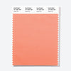 Pantone Polyester Swatch Card 14-1325 TSX Peach Pie
