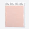 Pantone Polyester Swatch Card 14-1519 TSX Sugar Honey Glaze