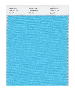 Pantone Nylon Brights Color Swatch 14-4530 TN Bluefish
