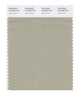 Pantone SMART Color Swatch 15-0309 TCX Spray Green