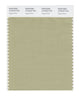 Pantone SMART Color Swatch 15-0318 TCX Sage Green