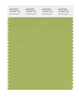 Pantone SMART Color Swatch 15-0336 TCX Herbal Garden