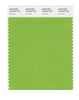 Pantone SMART Color Swatch 15-0343 TCX Greenery
