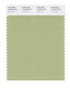 Pantone SMART Color Swatch 15-0523 TCX Winter Pear