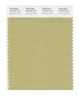 Pantone SMART Color Swatch 15-0525 TCX Weeping Willow