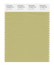 Pantone SMART Color Swatch 15-0628 TCX Leek Green