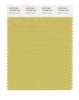 Pantone SMART Color Swatch 15-0636 TCX Golden Green