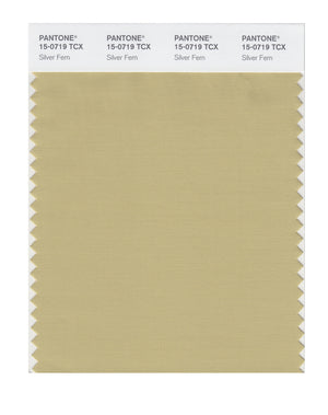 Pantone SMART Color Swatch 15-0719 TCX Silver Fern
