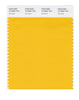 Pantone SMART Color Swatch 15-0955 TCX Old Gold