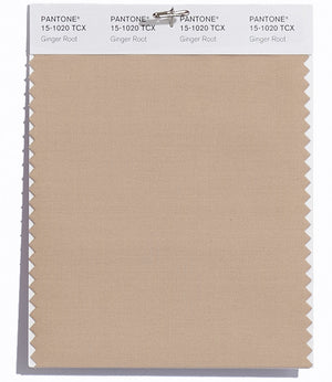 Pantone SMART Color Swatch 15-1020 TCX Ginger Root