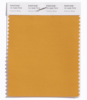 Pantone SMART Color Swatch 15-1045 TCX Autumn Blaze