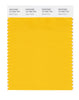 Pantone SMART Color Swatch 15-1062 TCX Gold Fusion