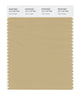 Pantone SMART Color Swatch 15-1119 TCX Taos Taupe