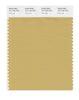 Pantone SMART Color Swatch 15-1132 TCX Fall Leaf