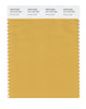 Pantone SMART Color Swatch 15-1142 TCX Honey Gold
