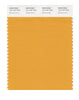 Pantone SMART Color Swatch 15-1147 TCX Butterscotch