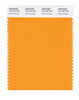 Pantone SMART Color Swatch 15-1157 TCX Flame Orange