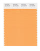 Pantone SMART Color Swatch 15-1160 TCX Blazing Orange