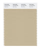Pantone SMART Color Swatch 15-1216 TCX Pale Khaki