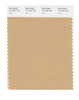 Pantone SMART Color Swatch 15-1225 TCX Sand