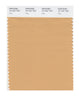 Pantone SMART Color Swatch 15-1231 TCX Clay