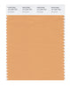 Pantone SMART Color Swatch 15-1234 TCX Gold Earth