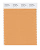 Pantone SMART Color Swatch 15-1237 TCX Apricot Tan