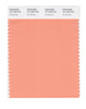 Pantone SMART Color Swatch 15-1239 TCX Canteloupe