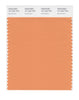 Pantone SMART Color Swatch 15-1242 TCX Muskmelon