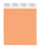 Pantone SMART Color Swatch 15-1245 TCX Mock Orange