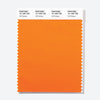 Pantone Polyester Swatch Card 15-1260 TSX Fall Fantasy