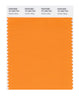 Pantone SMART Color Swatch 15-1263 TCX Autumn Glory