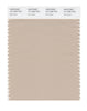 Pantone SMART Color Swatch 15-1309 TCX Moonlight