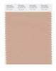 Pantone SMART Color Swatch 15-1316 TCX Maple Sugar