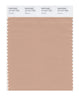 Pantone SMART Color Swatch 15-1317 TCX Sirocco