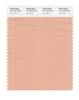 Pantone SMART Color Swatch 15-1318 TCX Pink Sand