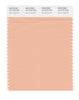 Pantone SMART Color Swatch 15-1319 TCX Almost Apricot