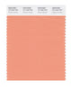 Pantone SMART Color Swatch 15-1333 TCX Canyon Sunset
