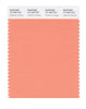 Pantone SMART Color Swatch 15-1340 TCX Cadmium Orange