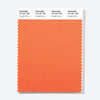 Pantone Polyester Swatch Card 15-1351 TSX Candied Yams