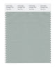 Pantone SMART Color Swatch 15-5205 TCX Aqua Gray