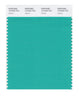 Pantone SMART Color Swatch 15-5425 TCX Atlantis