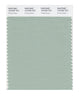 Pantone SMART Color Swatch 15-5706 TCX Frosty Green