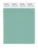 Pantone SMART Color Swatch 15-5711 TCX Dusty Jade Green